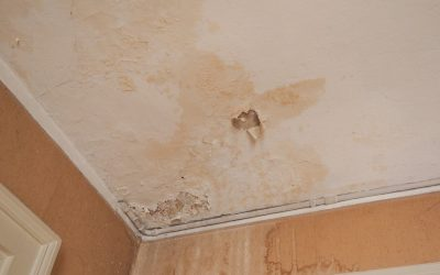 7 Signs of Water Damage in the Home